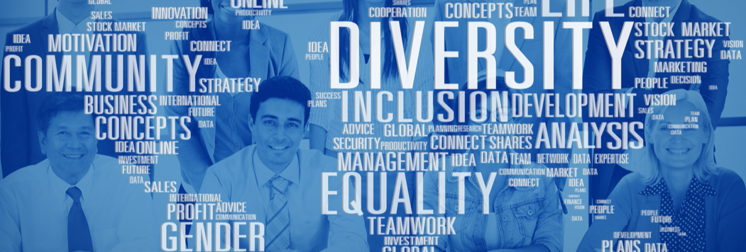 Inclusion and Diversity Partner Programme